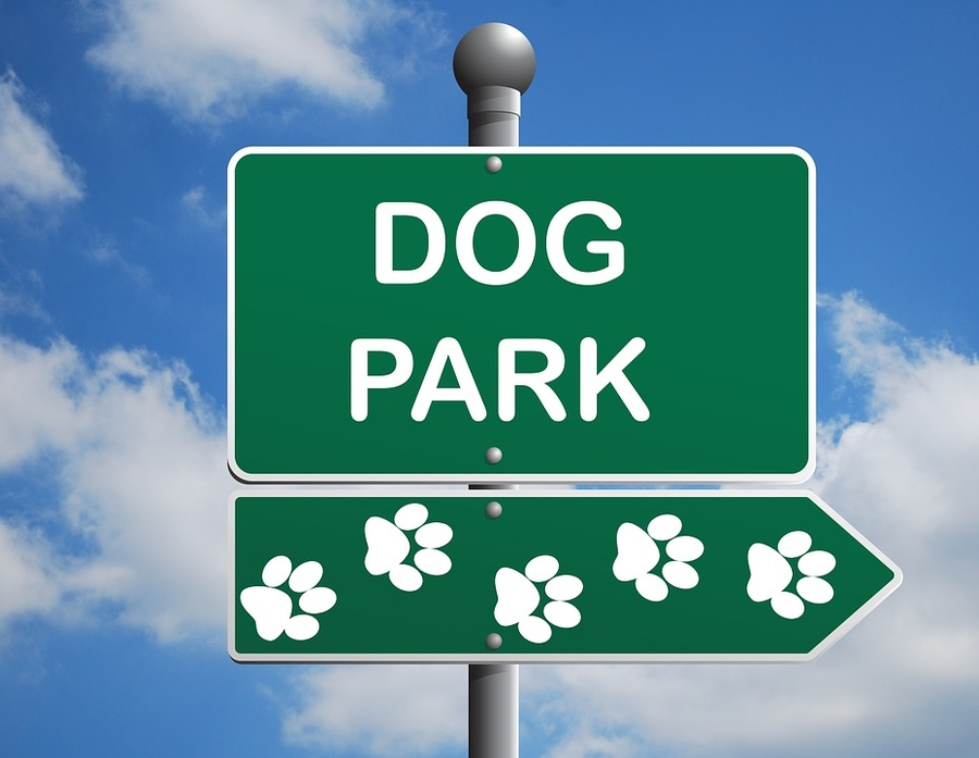 New Alliance, Texas, Dog Park Grand Opening September 15, 2018, from 10 am to 2 pm