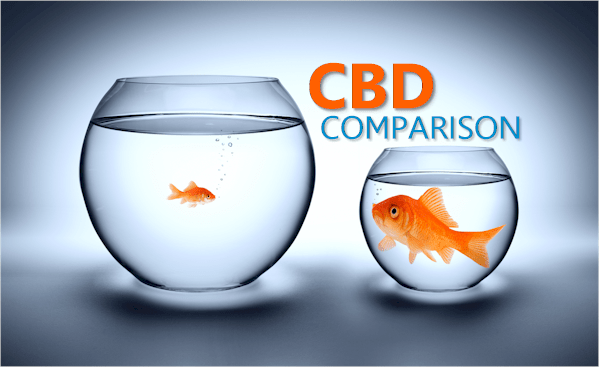 CBD Comparison and Review Across Major Brands Aims for Clarity