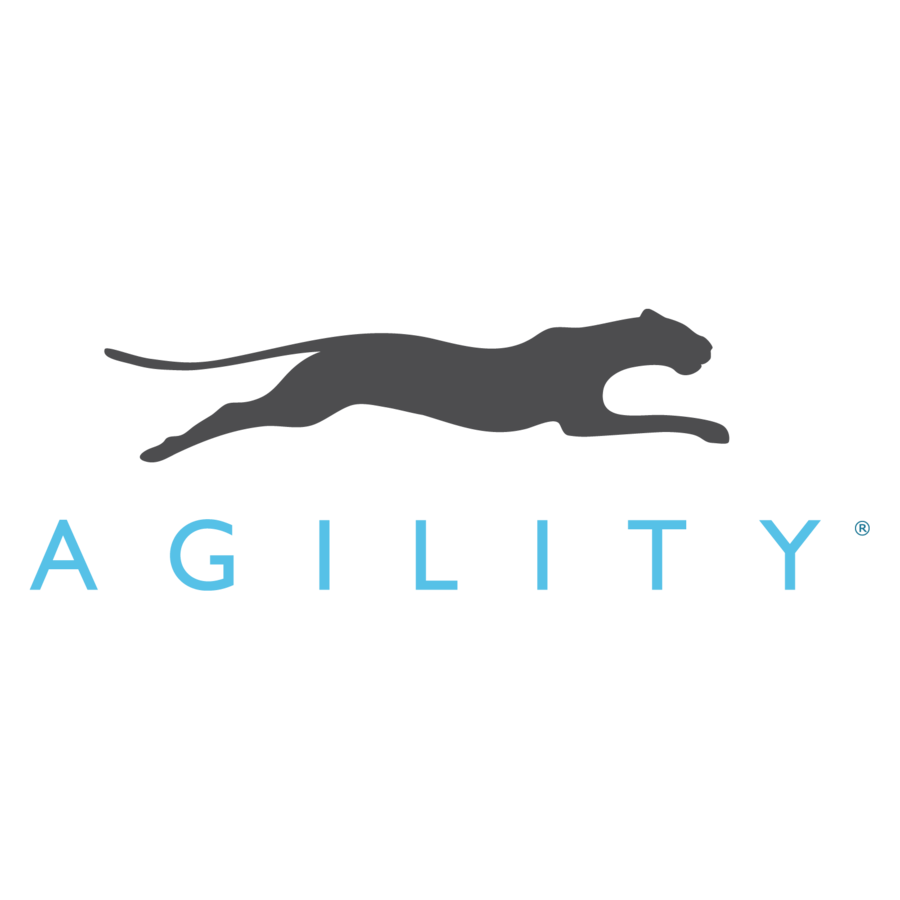 Agility CMS Kicks Off Massive Transformation, Sells Entire Professional Services Division and Focuses 100% on its Cloud Platform and Partner Network