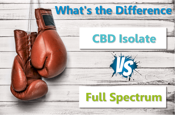 What They Are Not Saying About CBD Full Spectrum Versus Isolate