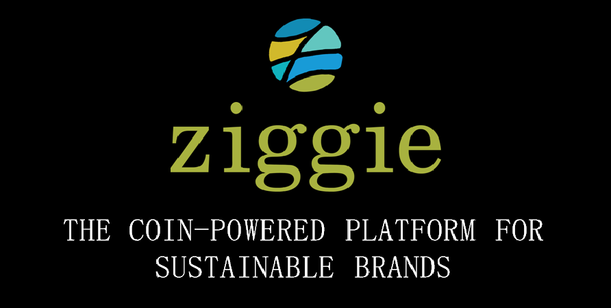 ziggie Gets Listed on THE OCMX™