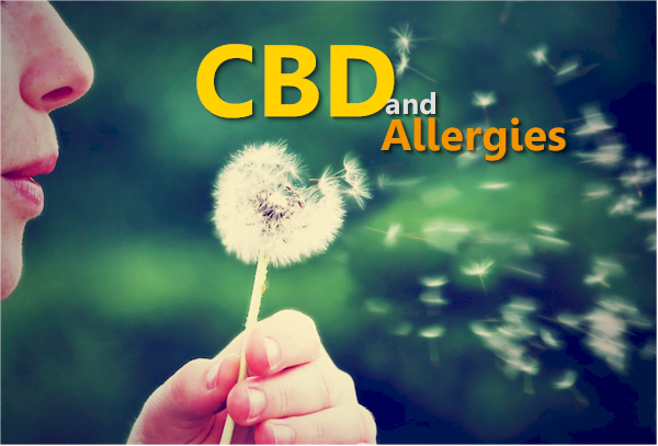 CBD, Women, and Histamines – Nothing to Sneeze At!
