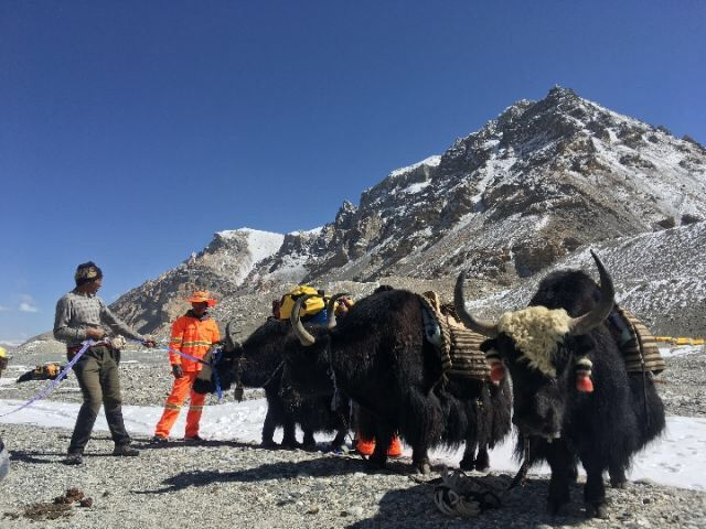 Great Tibet Tour Clarify Fake News About Everest