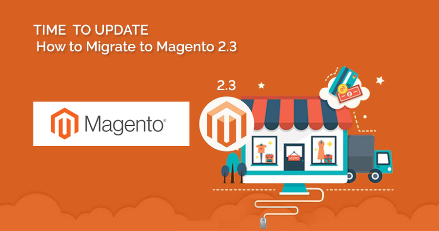 Maximize Studio Magneto Ecommerce Complete the Liability of E-commerce in 2019