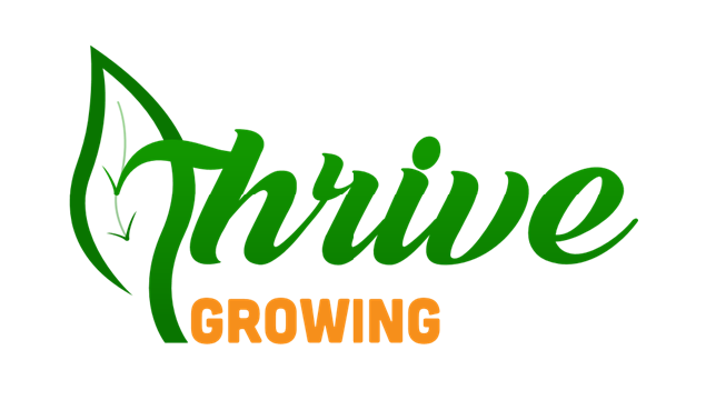 Thrive Growing Achieves Cannabis Industry Leading Production Performance
