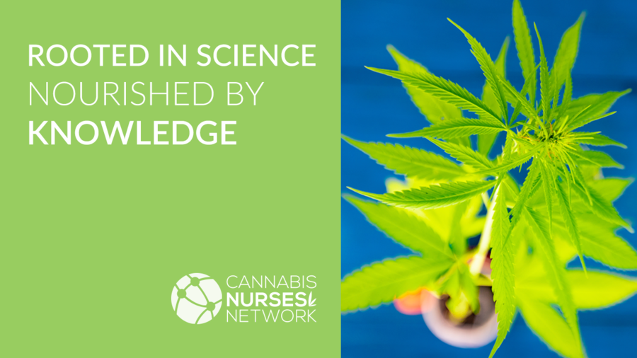 Cannabis Nurses Network Celebrates One-Year Anniversary With Release of Online Continuing Education Program and #futuremillionRN Campaign