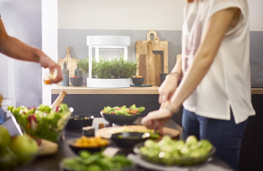 Verdeat (US/EU company) – a Breakthrough Indoor Gardening System Debuts on Kickstarter This July