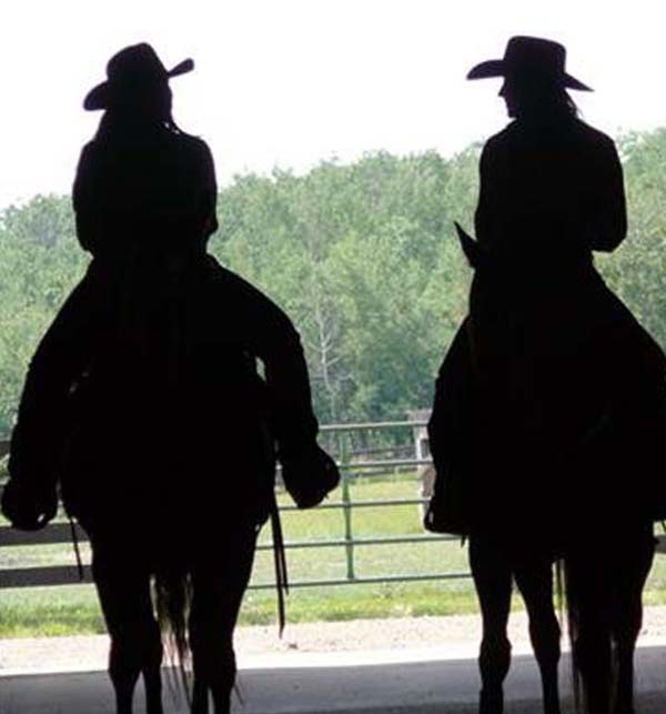 Trauma To Triumph Family Ranches Offers A New Path For Broken Families