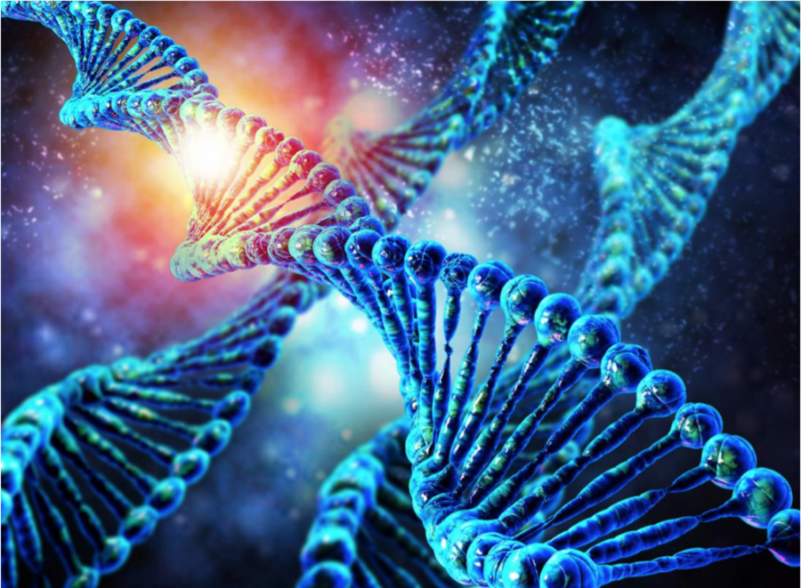 UAE Heading Towards Genome Era – Pure Health to Create a Regional Reference Laboratory and a Genome Testing Facility