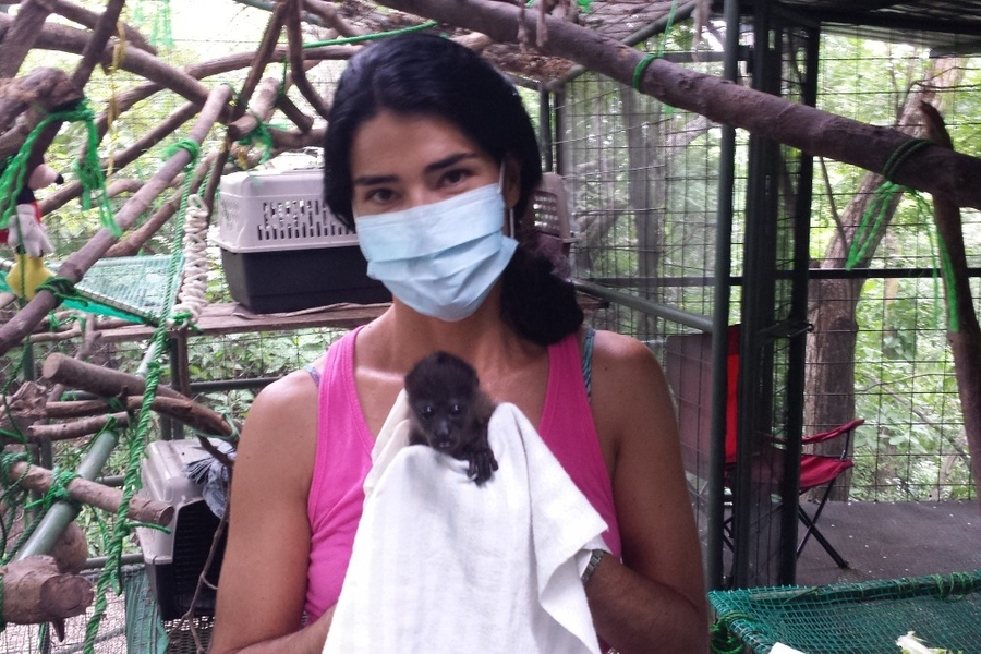 Concerned Citizens Pool Together to Help Wildlife Sanctuary in Costa Rica