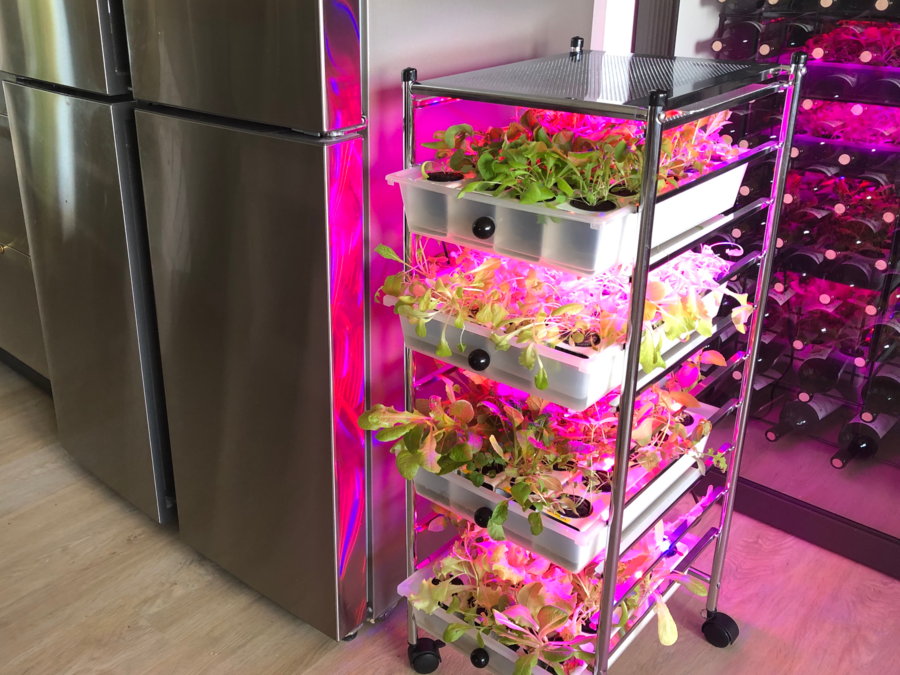MIG – Vertical Modular Indoor Hydroponic Garden System Debuts This October