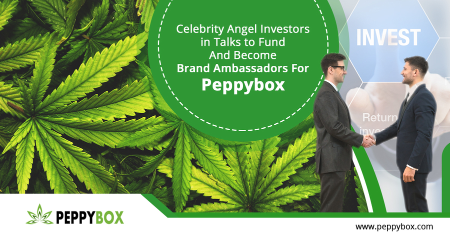 Celebrity Angel Investors in Talks to Fund and Become Brand Ambassadors for Peppybox