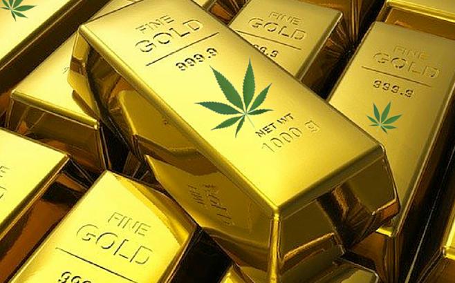 Canadian Cannabis Companies Fuel a Gold Rush in the European Market