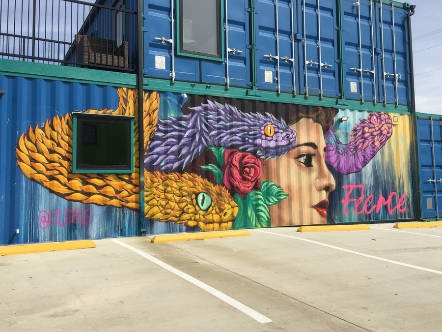 Largest Outdoor Art Gallery in Texas at Fort Worth Design District