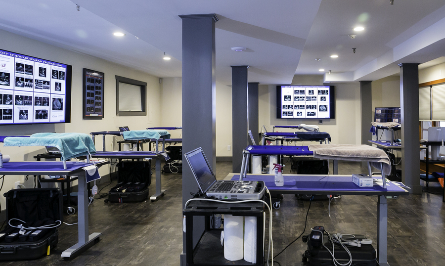 SonoPath™ Opens New Hands-on Veterinary Ultrasound Training Facility