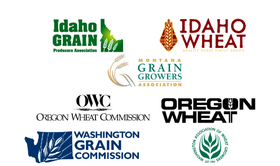Northwest Wheat States Unite in Response to Draft Environmental Impact Statement