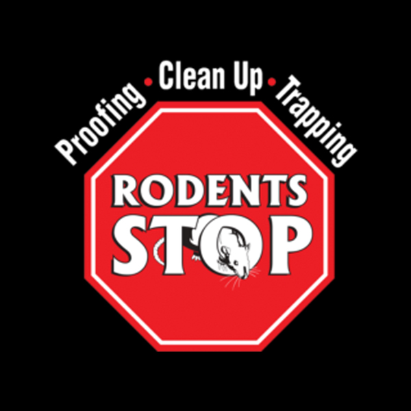 Southern California Rodent Extermination Company Assists Homeowners During COVID-19 Pandemic