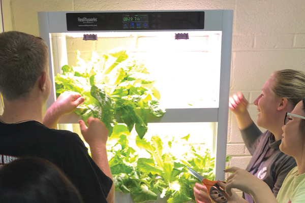 Realityworks® Hydroponics Educational Systems earn Honorable Mention in Fast Company's 2020 World Changing Ideas Awards