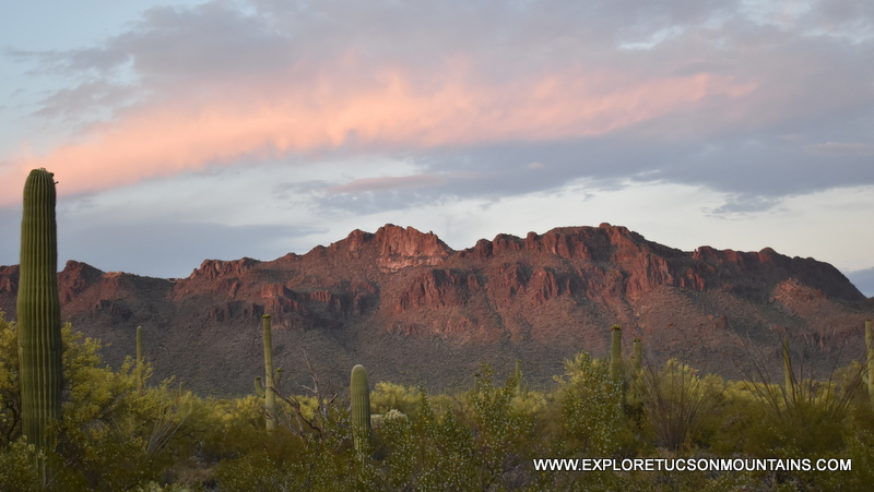 "Suffering from ""Pandemic Boredom""? Find a Remedy in the Tucson Mountains"