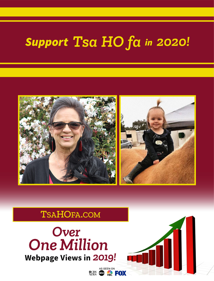Succeeding Against All Odds: Doni-Jo Minor-Munro and Her Tsa HO fa Non-Profit Have Navigated the Pandemic Capably, Now It's Time to End 2020 on a High Note