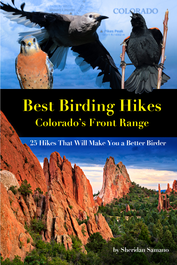 New eBook Features 25 Colorado Front Range Trails That Will Make You a Better Birder
