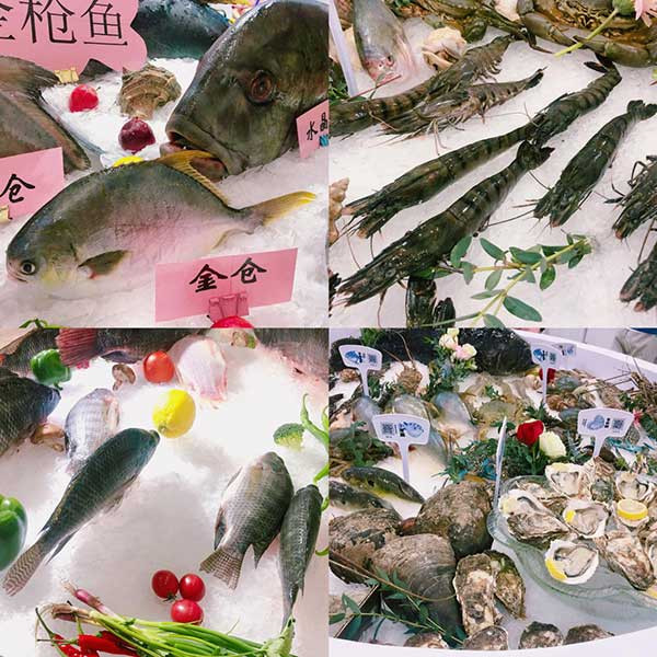 CBFI joined in the 6th Guangzhou International Fishery Expo 2020