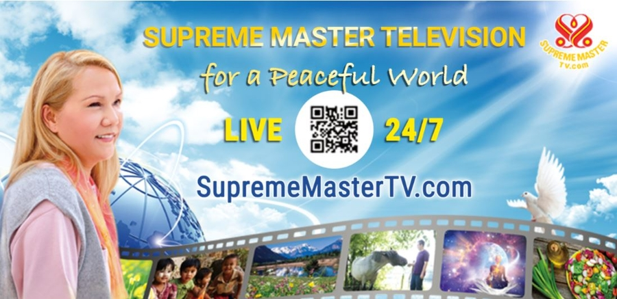 An Innovative TV Channel that is Making A Difference