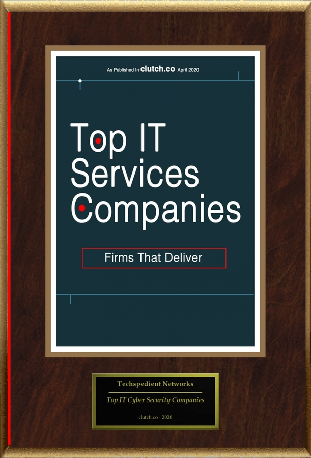 "Techspedient Networks Selected For ""Top IT Services Companies"""