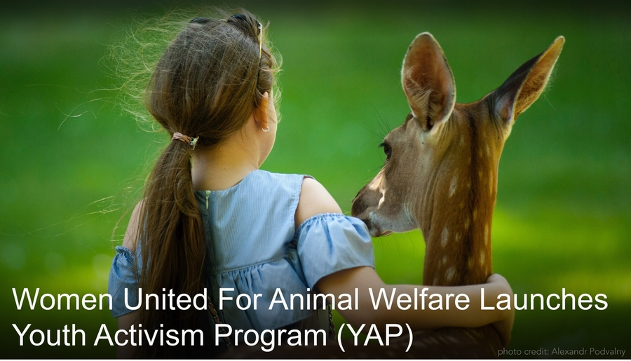 Women United For Animal Welfare Launches Youth Activism Program (YAP)