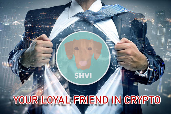 Vizsla Inu | Charity for Dog Shelters Created With Crypto Transactions