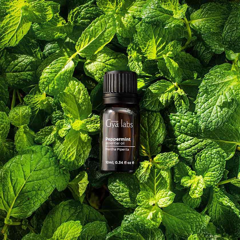 5 Best Essential Oils For Seasonal Allergies